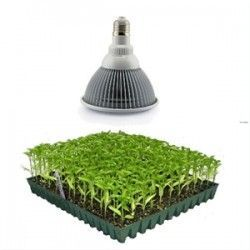 LED vækstlampe, 12W, E27, Grow lamp