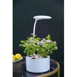 Hydroponi LEDlife hydroponisk mini køkkenhave - Hvid, inkl. vækstlys, 6 pladser, indbygget timer, 1,8L vandtank