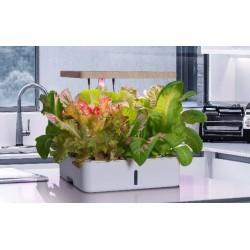 Hydroponi LEDlife hydroponisk køkkenhave - Hvid, inkl. vækstlys, 12 pladser, timer, 4L vandtank
