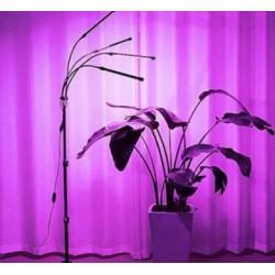 Hydroponi LEDlife vækstlys med stativ - Sort, 4 lamper, justerbar højde, fleksible arme