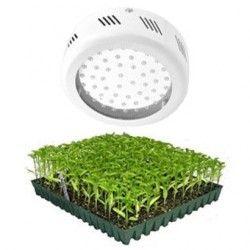 LED vækstlys LED UFO vækstlampe, 50W, 220V, Grow lamp